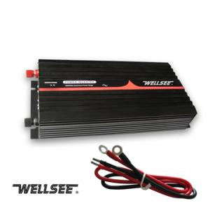 Wellsee WS-IC1000 1000W high frequency voltage inverter